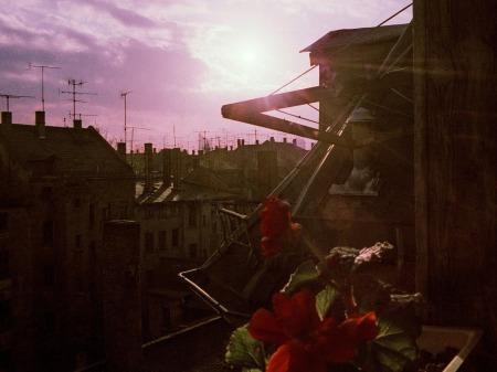 L.-Neustdt, herbstlicher Blick aus dem Küchenfenster in der Schulze-Delitzsch-Straße, Oktober 1984