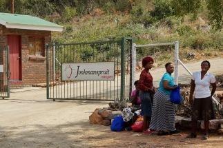 Mangopflückerinnen nach einem Arbeitstag (als Tagelöhner). Wenn sie den ganzen Monat arbeiten, dann verdienen sie etwa 1.000 Rand (~55 EUR).