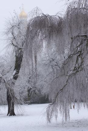 winter17_98