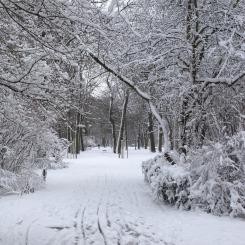 frisch verschneiter Friedenspark